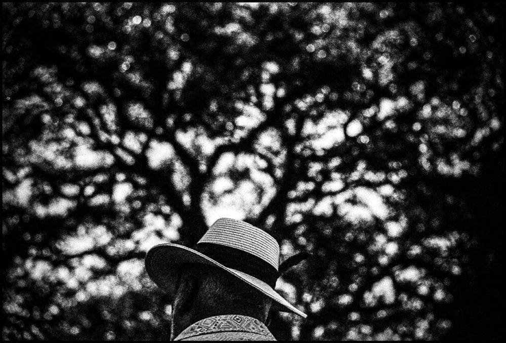 Hat, 2017 - #6