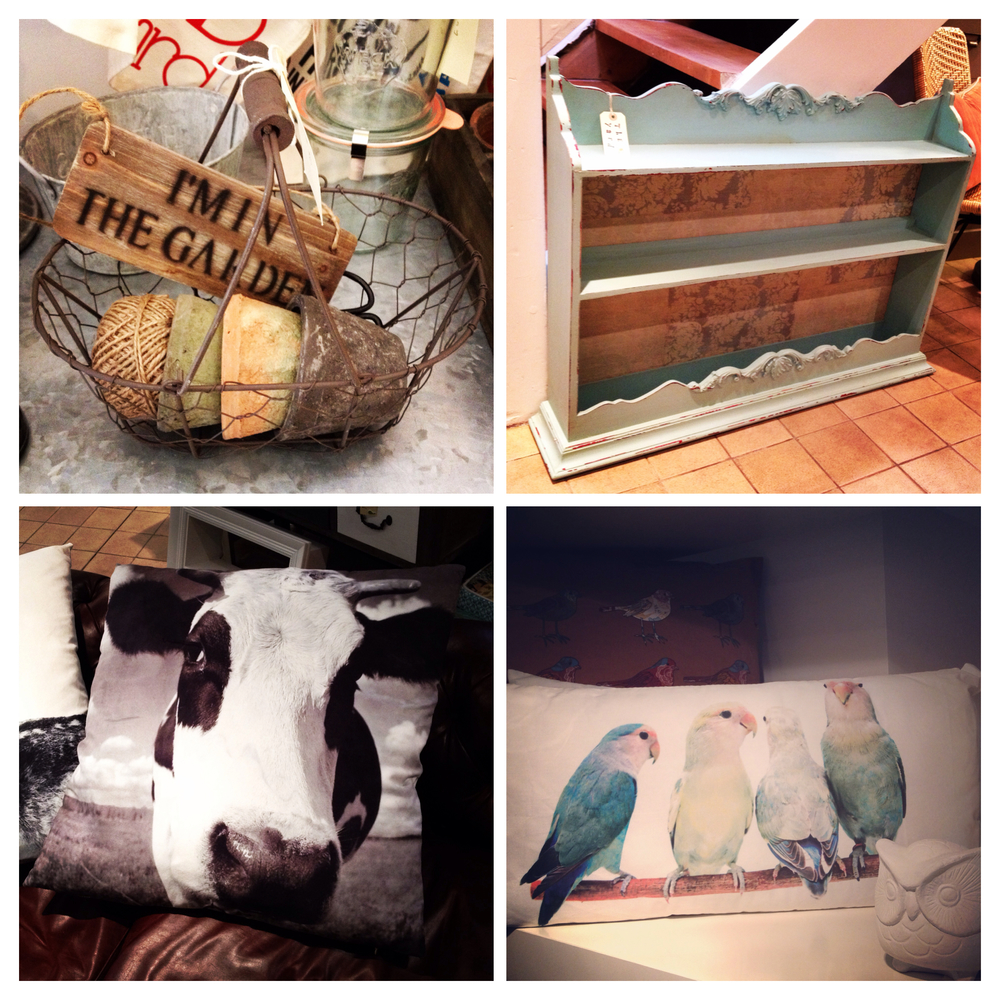 Ideal gift for gardeners, beautiful blue wall rack, extra large cow cushion and long parakeets cushion.