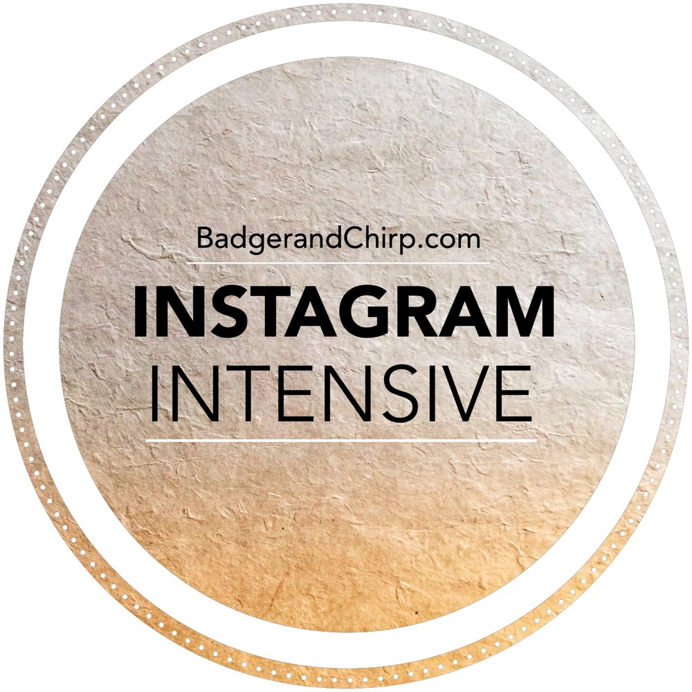 Instagram Intensive - Instagram is a growing platform for businesses. It's continually changing algorithm can give any one the turn around. However, with standard principles and essential strategy, your brand will stand the test of time and sail smoothly in any algorithm storm. In this 90 minute meeting, we'll hone in on your brand's specific needs and create an actionable plan for your business on Instagram. Investment: $97