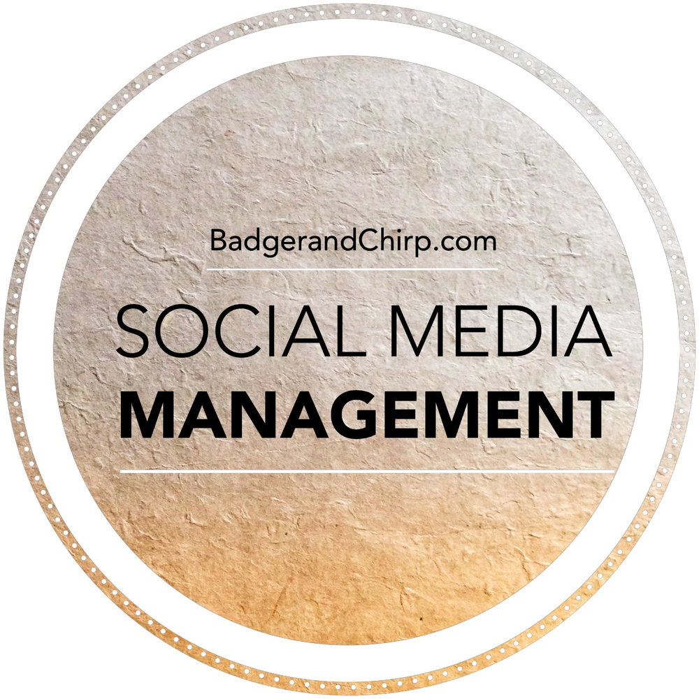 Social Media Management - Ready to take social media off your daily to-do list? We offer marketing strategy, content creation and full/partial management of your social media. All tailored to your brand's specific needs.   Investment: Starts at $100