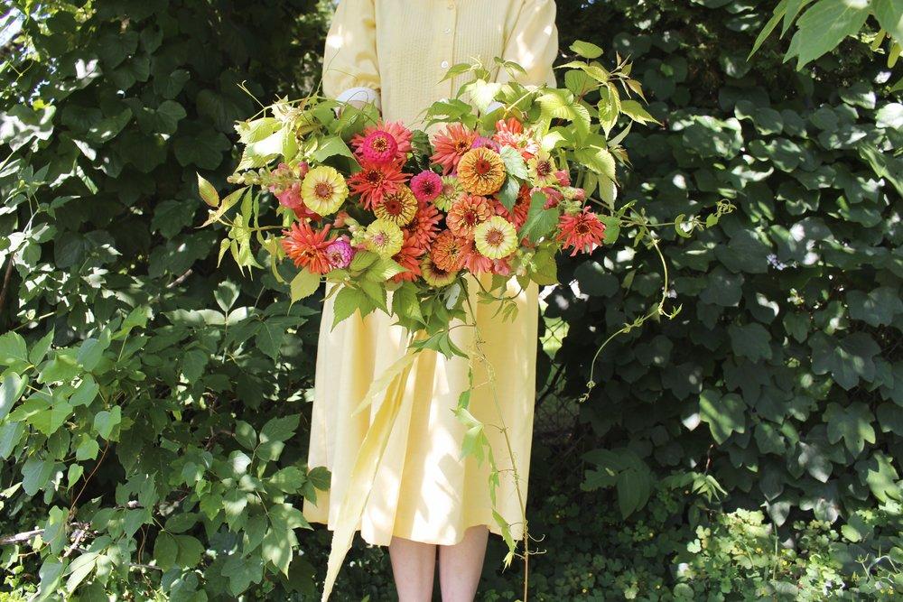 coming soon! zinnias | hawley hill gardens