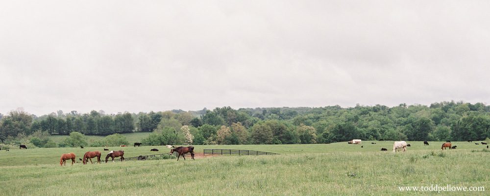 12-kentucky-farm-wedding-photography-009.jpg