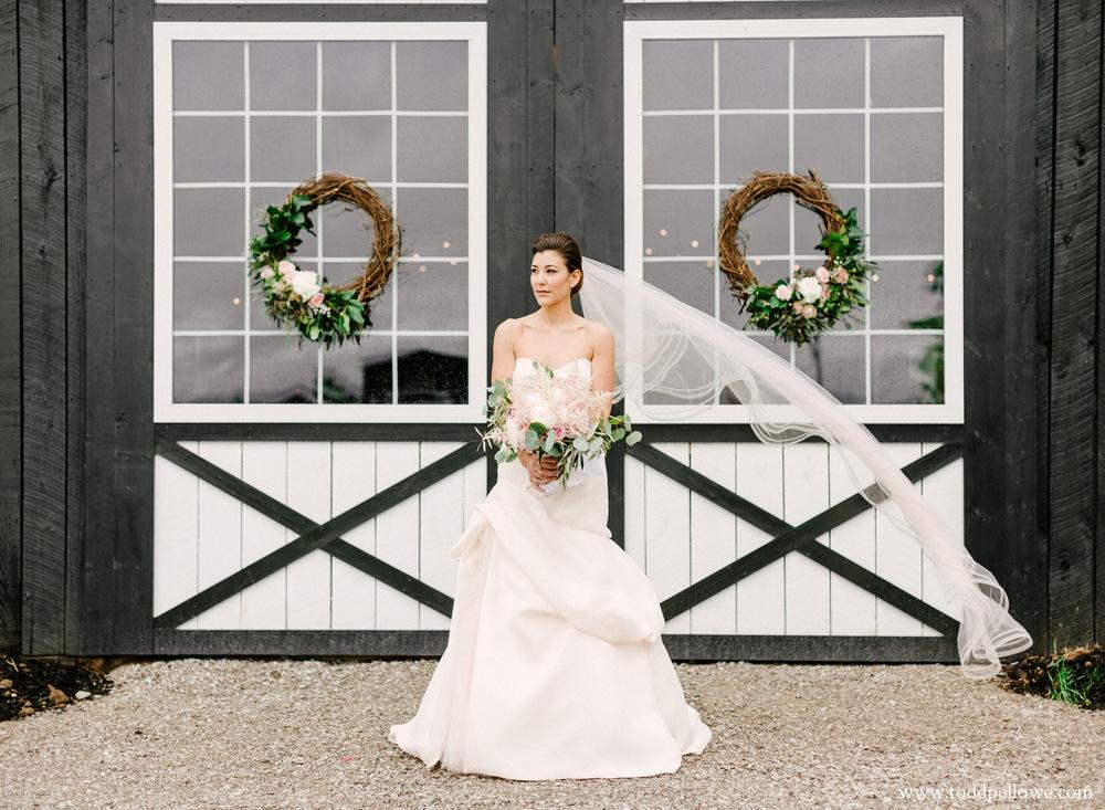 Monique Lhuillier Wedding Dress 2015