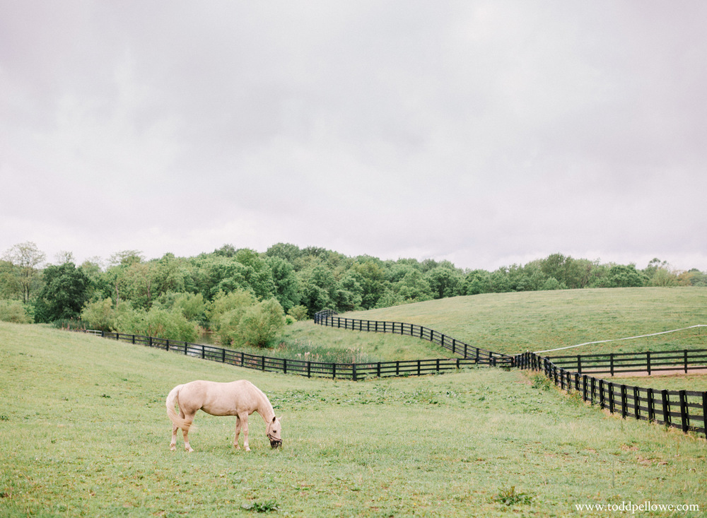 38-kentucky-farm-wedding-photography-106.jpg