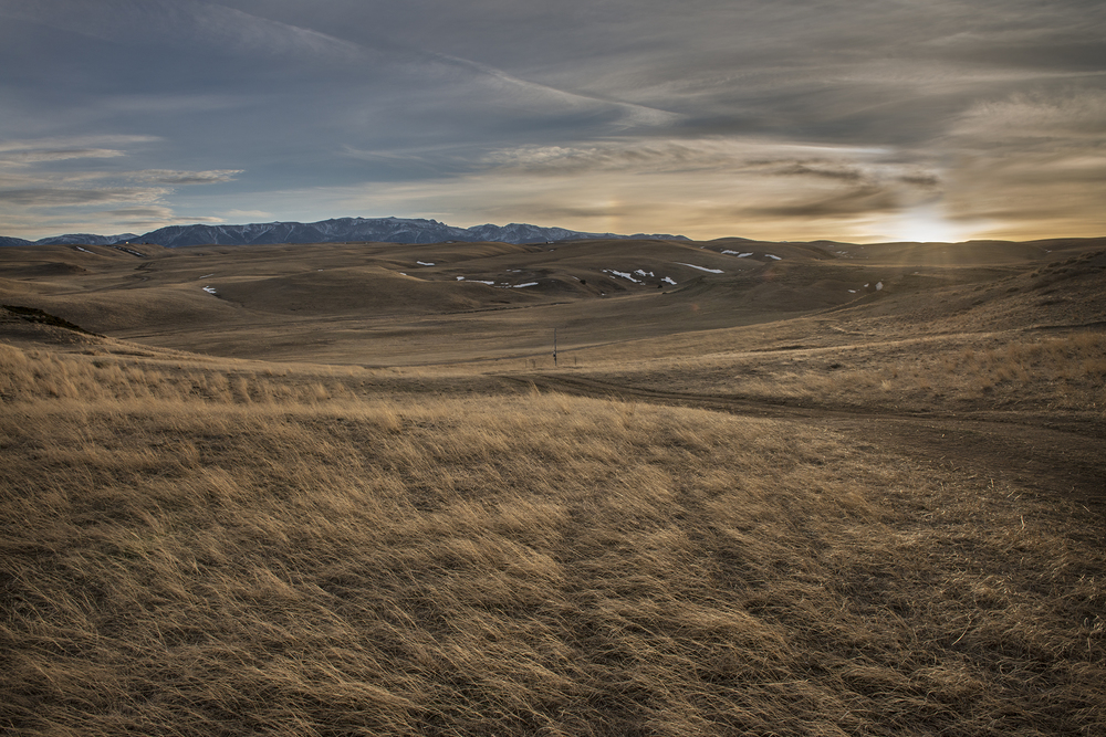 The expansive ranch at Tippet Rise. (Photo: Alexis Pike/Surface)