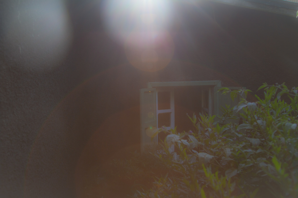 6a_home.jpg