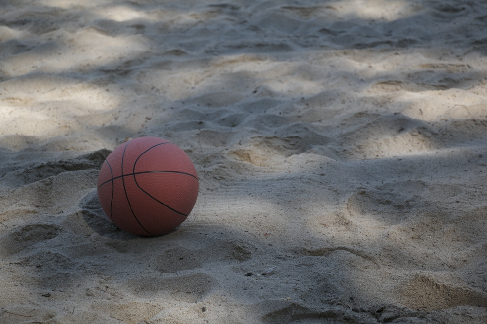 oooh, a fancy picture of a basketball that I took all by myself
