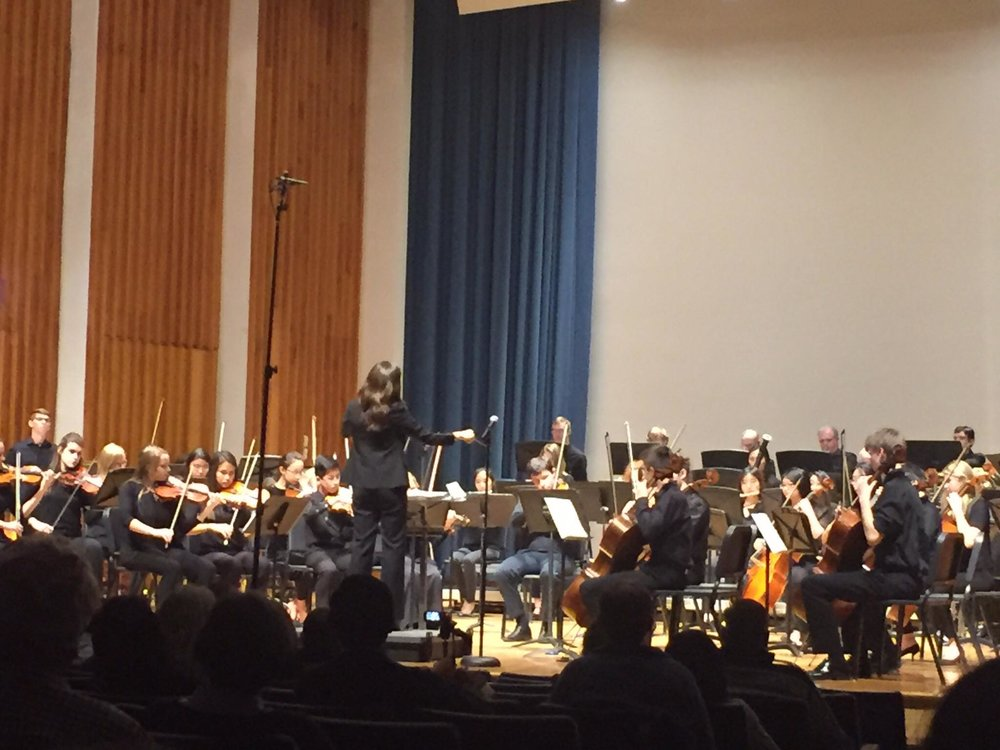 Central PA Youth Orchestra Image 2