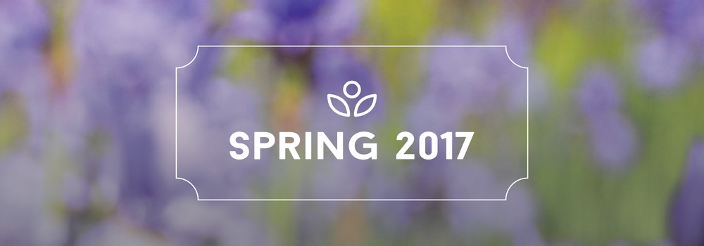 Spring Generic Gallery Image-01.png