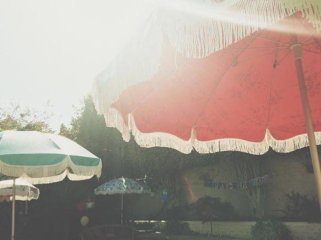 Happy first day of summer north hem! 118 degrees today in LA, stay shady 🍄#beachumbrella #sunnydays #umbrella