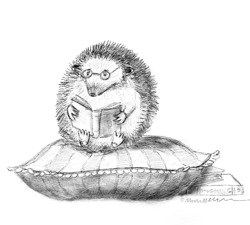 Bookiehedgie-pencils-cropped845.jpg