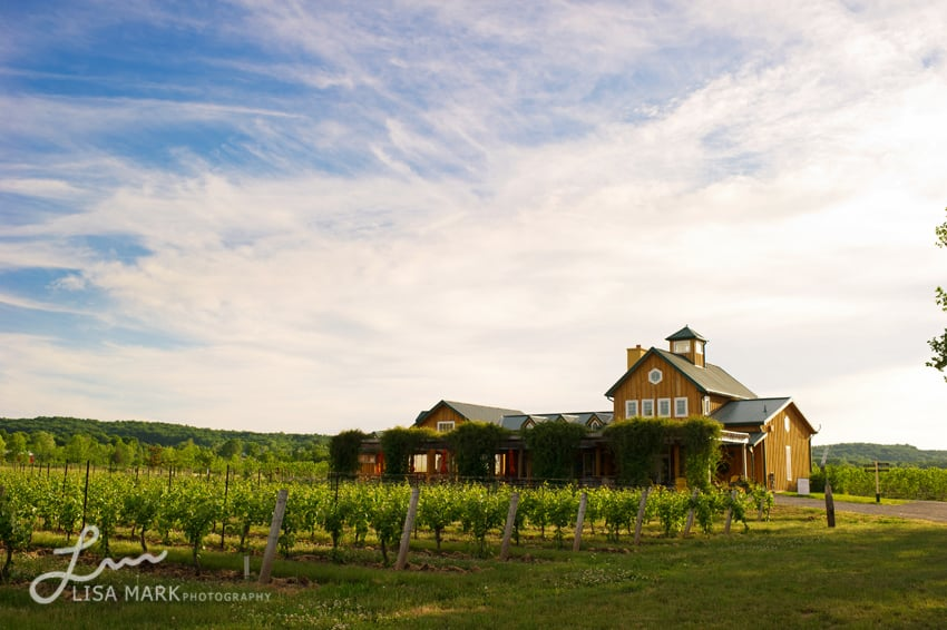 The_Good_Earth_Vineyard_Engagement_Photography_02.jpg