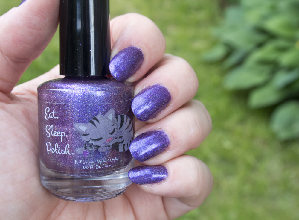 Eat, Sleep Polish - Sisterhood of the Travelling Polish