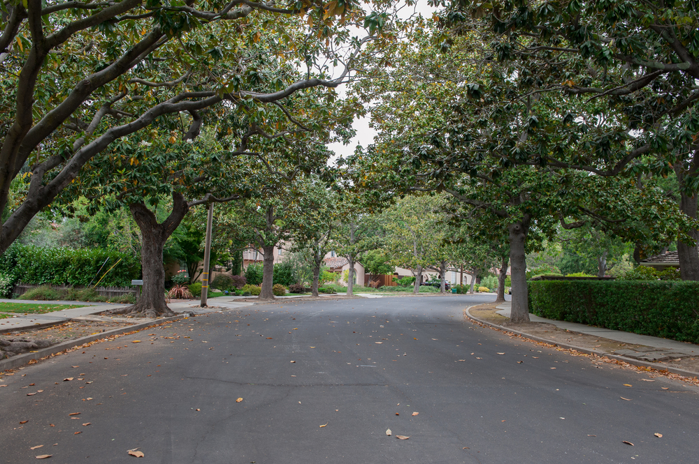 High School Acres offers tree lined streets and large lots.