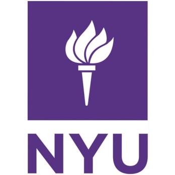 NYU Summer Intensive