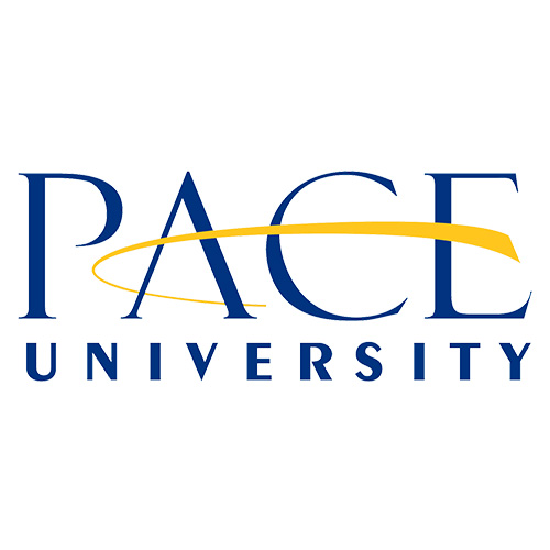 Pace University Executive MBA Presentations