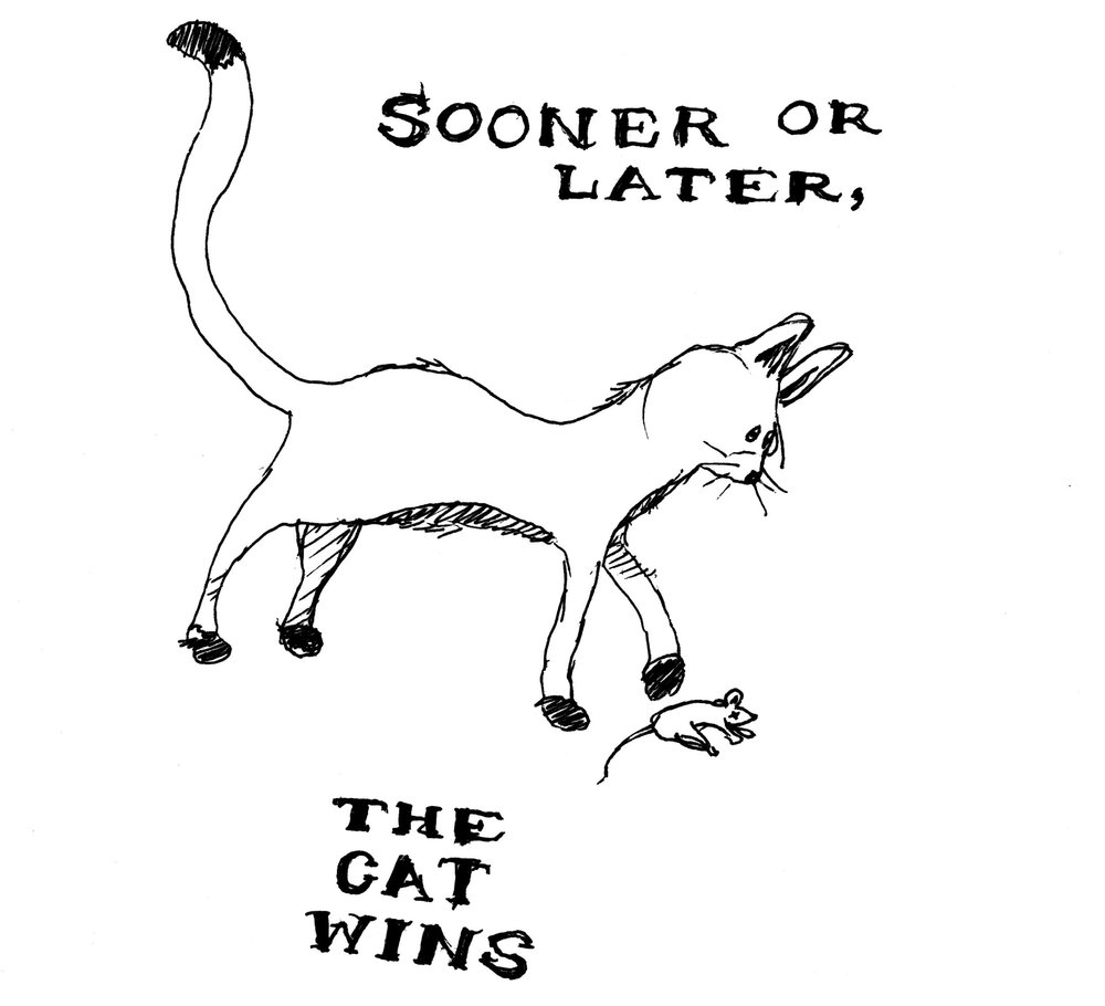 The Cat Wins,  2013. 6 x 9 inches. Ink on Paper