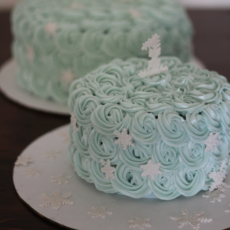 Winter Wonderland Smash Cake