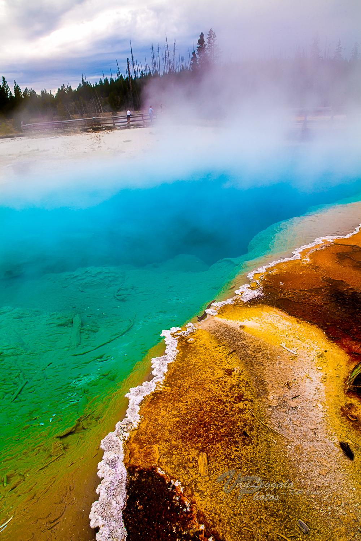 Yellowstone Lake Hot Spring Pool.JPG