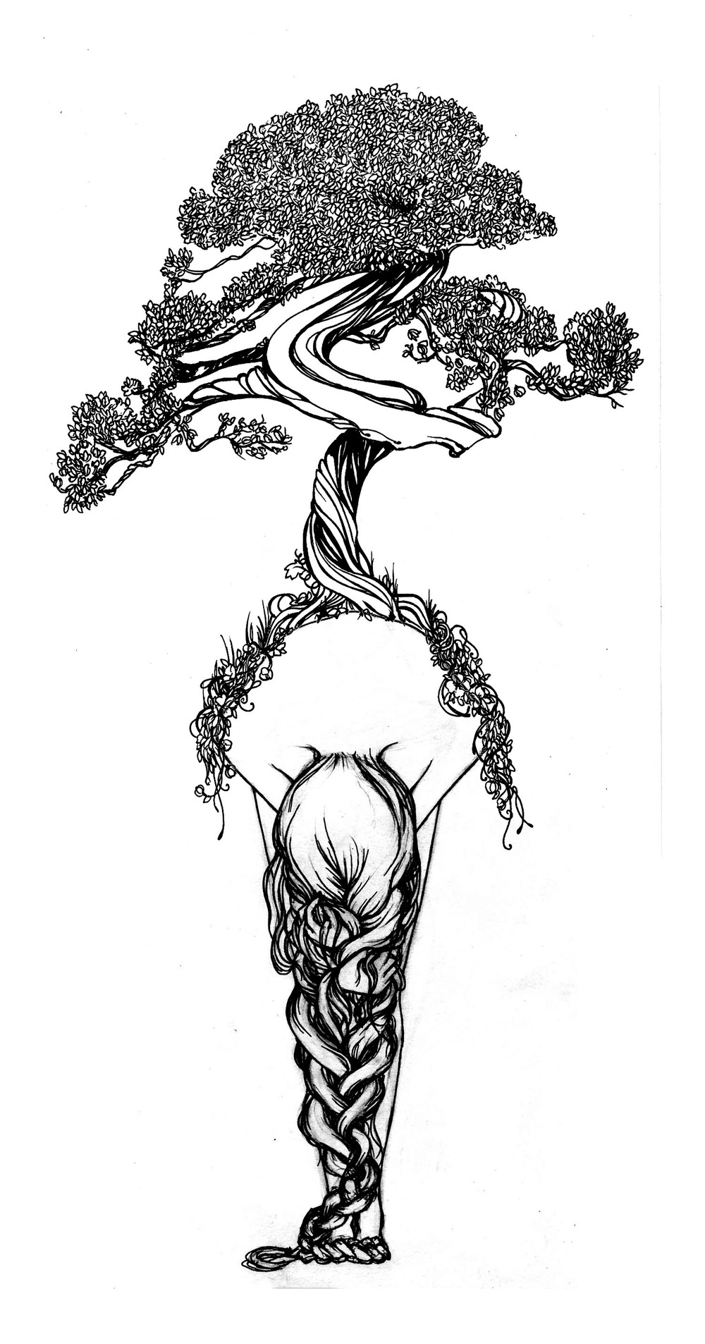 drawing045+bonsai.jpg