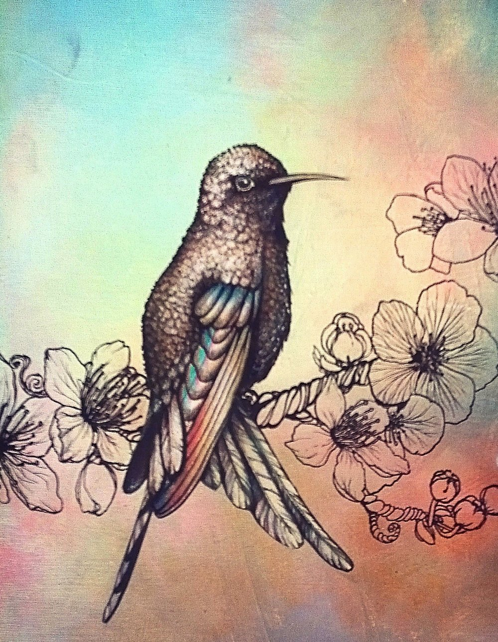 Hummingbird on Blossoms.jpg