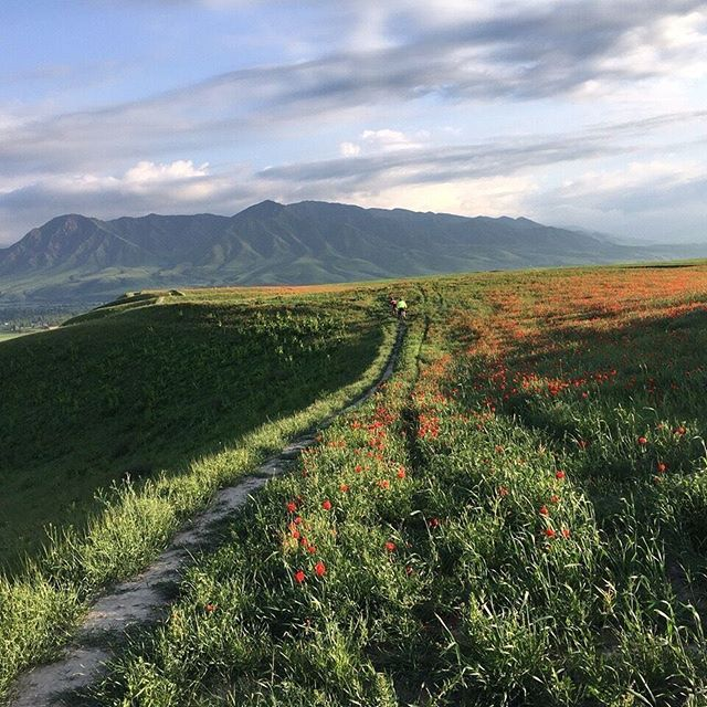 We are open for sign ups to visit this beautiful country! Head over to itlr.org to register! #itlr2017 #Kyrgyzstan