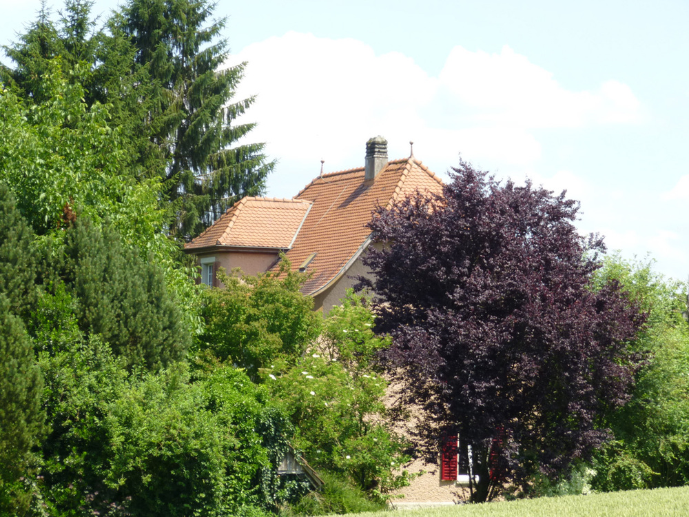 Haus in Aarau erfolgreich verkauft Preiserwartung übertroffen