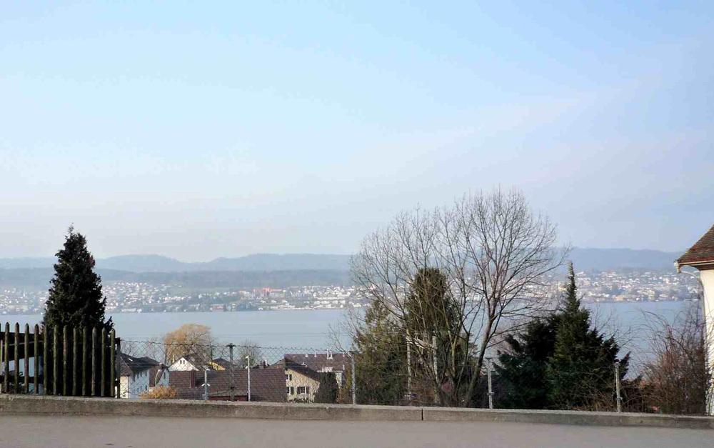 Grundstück mit Seesicht, Erlenbach erfolgreich verkauft Preiserwartung übertroffen