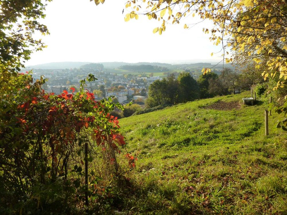 Erschlossene Terrassenhausparzelle mit unverbaubarer Bergsicht erfolgreich verkauft
