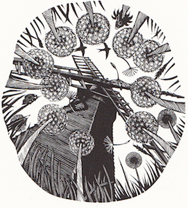 Keith Petit  is a Sussex based artist, printmaker and sculptor, voted the Artwave's 'Favourite Artist' for the last two years. His wonderfully evocative, highly collectible, quintessentially Sussex landscape wood engravings will be exhibited at the shop during the festival. keithpettit.co.uk