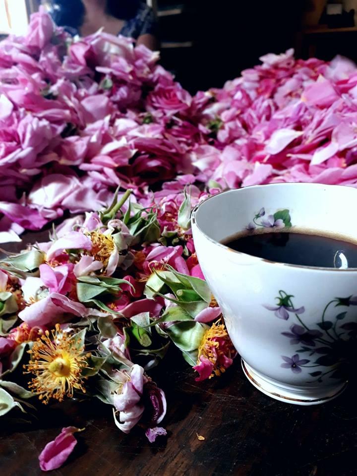 roses tea cup.jpg