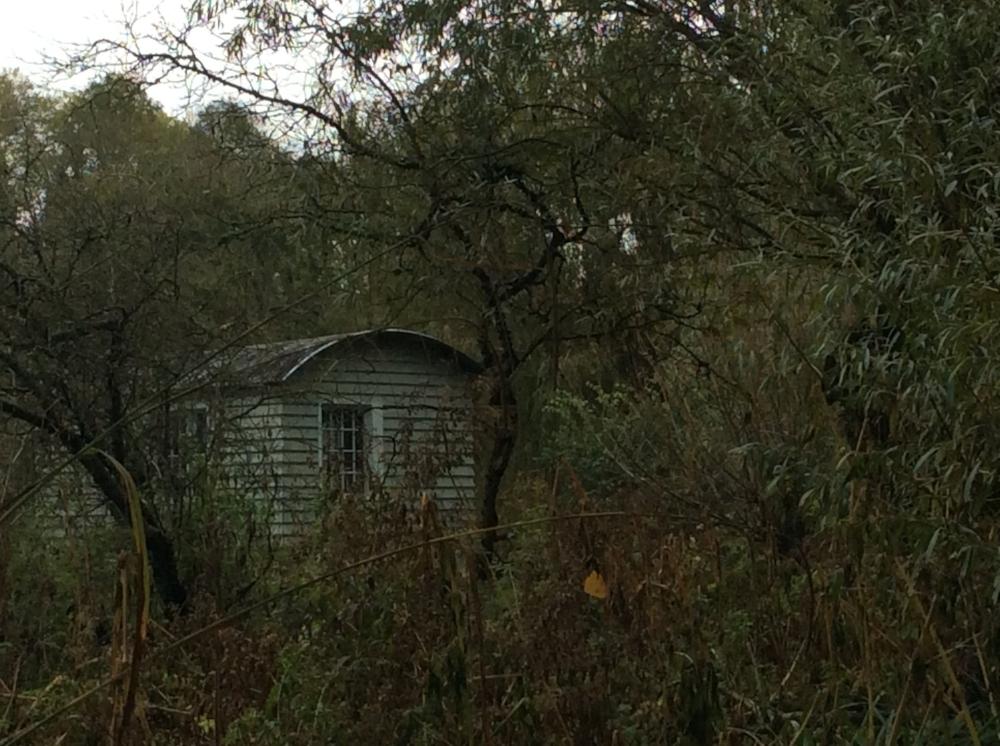 shepherd hut.JPG