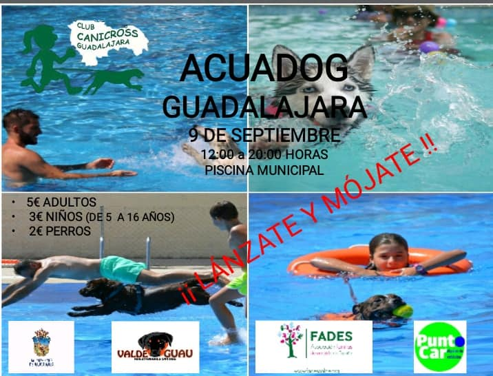 2018aquadogGuada_9 SEPT.jpg