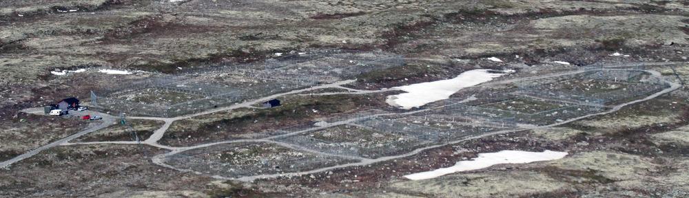 Avlsstasjonen for fjellrev ligger på Sæterfjellet i Oppdal kommune (1380 meter over havet). Stasjonen ble etablert i 2005 og driftes av Norsk institutt for naturforskning (NINA) med støtte fra Miljødirektoratet.Dyr fra flere av fjellrevområdene i Norge og Sverige er fanget inn og satt her. Foto 2014: Arne Nyaas