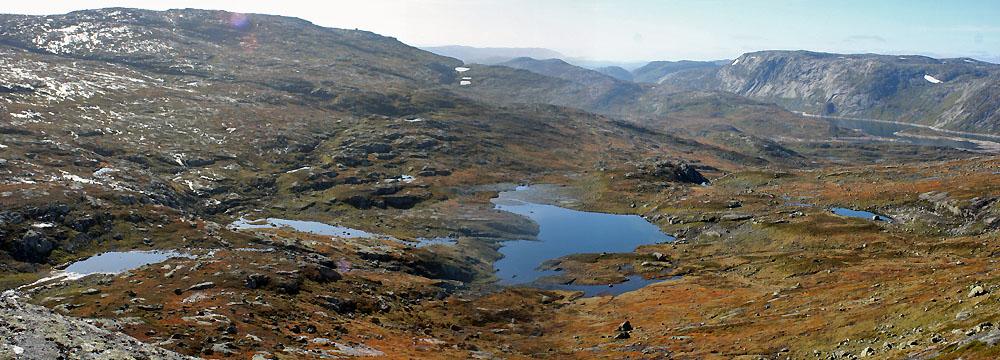 Foto fra Setesdal-Ryfylke villreinområde. Foto: Karl Gunnar Hoven