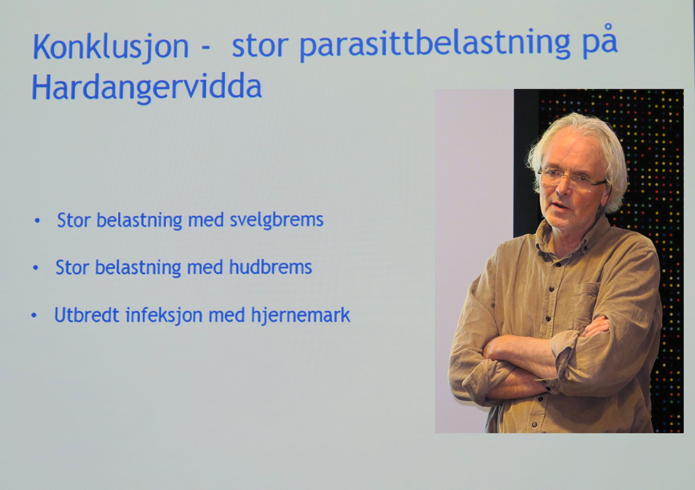 Kjell Handeland. Last ned foredraget (pdf). Foto: A. Nyaas