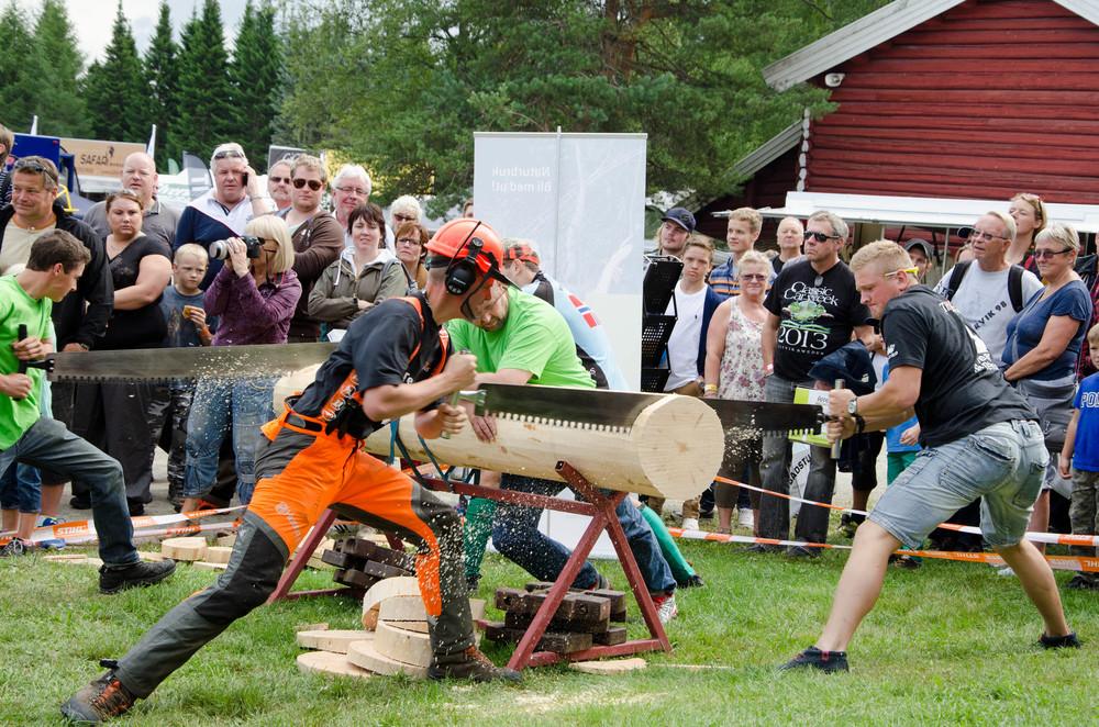 Aktivitetene står i kø under De Nordiske Jakt- og Fiskedager på Elverum i dagene 6. til 9. august 2015.Foto: Bård Løken, NSM