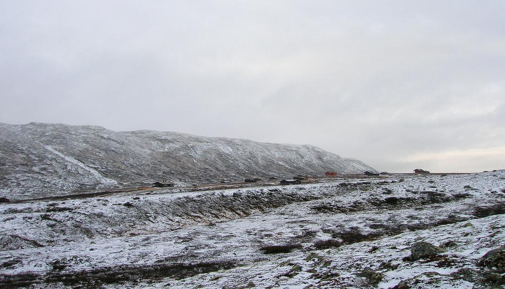 Lufsjåtangen har kvaliteter villreinen trenger vinterstid. Relativt lite snø, og mye lav. Foto: Anders Mossing
