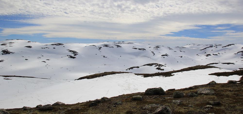 Vårsol i villreinfjell. Illustrasjonsfoto: Anders Mossing