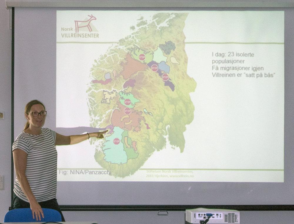 "Leiar ved Norsk Villreinsenter Skinnarbu, Marianne Singsaas snakka om ""Vannkraft, arkeologi og villrein."" Foto: Kjell Bitustøyl"