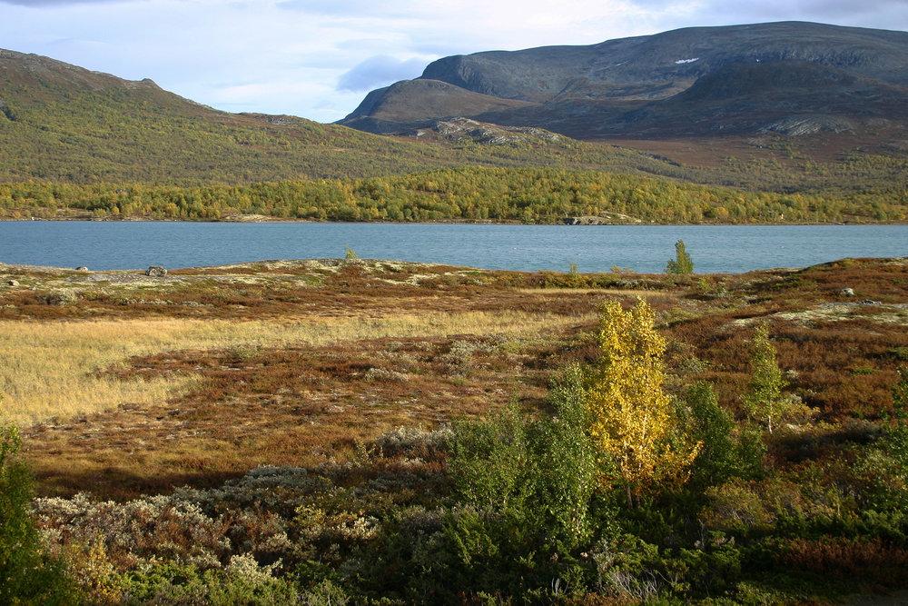 Sjodalen er arena for Jotunheimen Reinsdyrfestival. Dette er frå Øvre Sjodalsvatn mot Sikkilsdalen. Foto: Kjell Bitustøyl