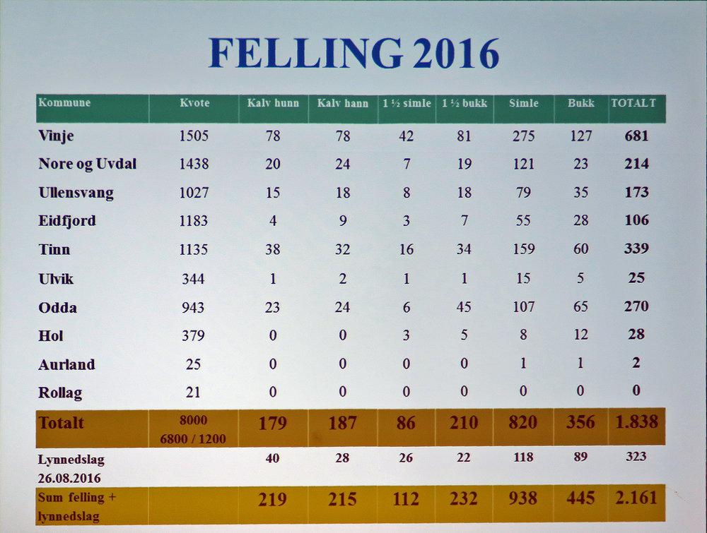 Denne tabellen utarbeidet av Svein Erik Lund forteller det meste om årets villreinjakt på Hardangervidda. Desidert flest dyr ble felt i Vinje, med Tinn på andreplass.