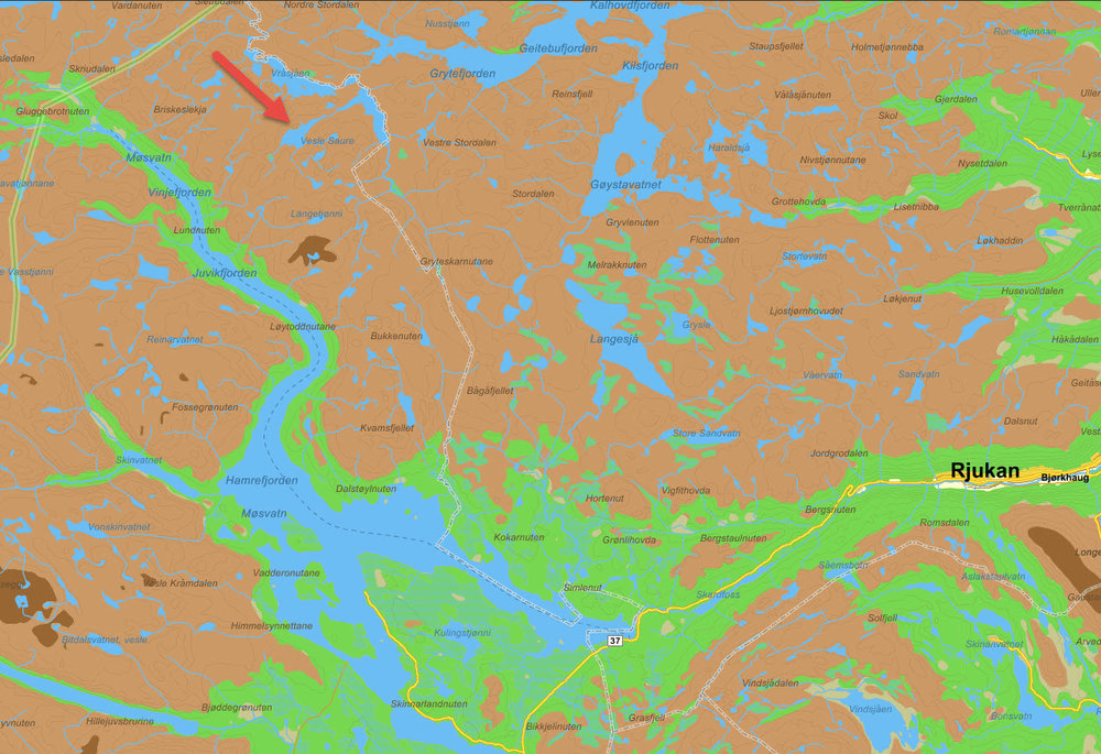 Dette kartutsnittet viser stedet for lynnedslaget på Hardangervidda (rød pil); nord for vannet Vesle Saure i Vinje kommune. Kartutsnitt: Gule sider