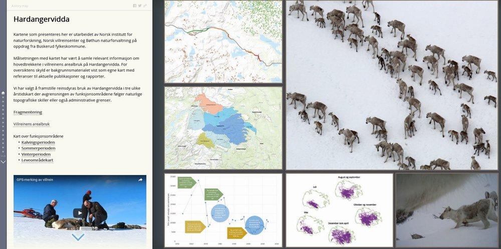 Digitale historier er i vinden som aldri før. Dette er et skjermbilde fra en kommende historie om Hardangervidda.