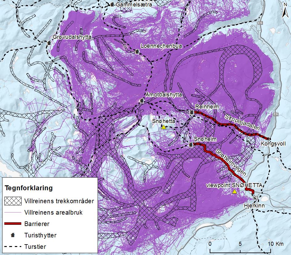 Situasjonsbeskrivelse av villreinens trekkområder og de to aksene Snøheimvegen og Stroplsjødalen som villreinen må krysse for å komme til vinterbeitene i sør. Klikk på figuren for å forstørre. Kilde: Figur 1 i NINA rapport 1313.