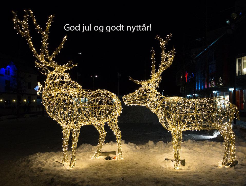 Belyste rein-/hjortefigurer i Tromsø. Foto: Kjell Bitustøyl