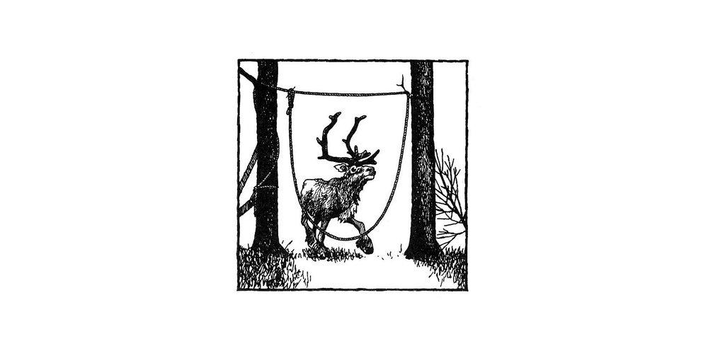 Reinsnare frå Jukkasjärvi socken, Lappland, teikning av A. Wepsäläinen etter G. Ullenius.