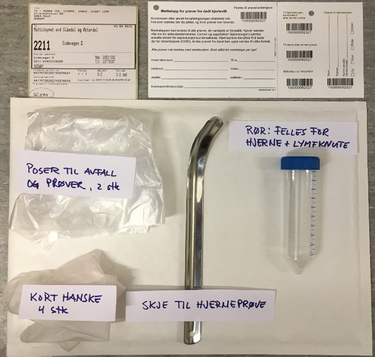 Prøvetakingsutstyr. Foto: Veterinærinstituttet