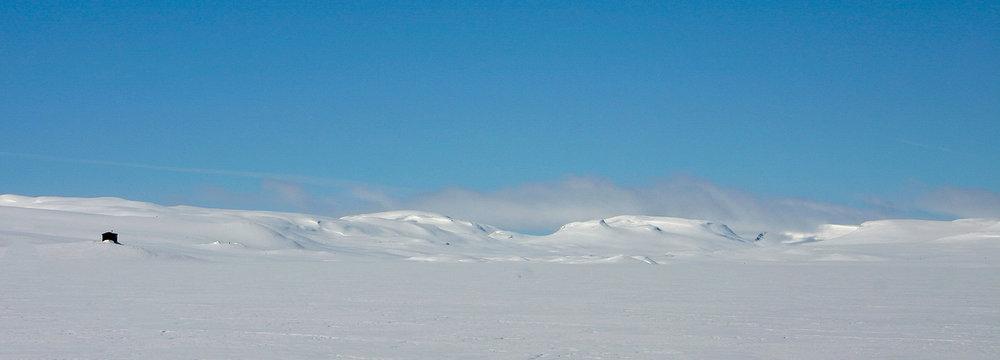 Hardangervidda nasjonalpark: frå Langavatn mot Sildabudalen og Lægreidsnutane. Foto: Kjell Bitustøyl