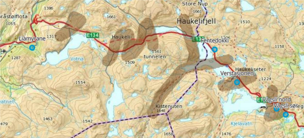 Aktuelle trekkområder over E 134. Illustrasjon: Naturrestaurering AS